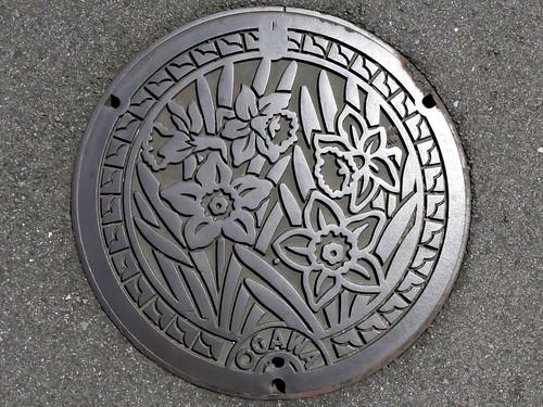 Ogawa Kumamoto, manhole cover (熊本県小川町のマンホール)