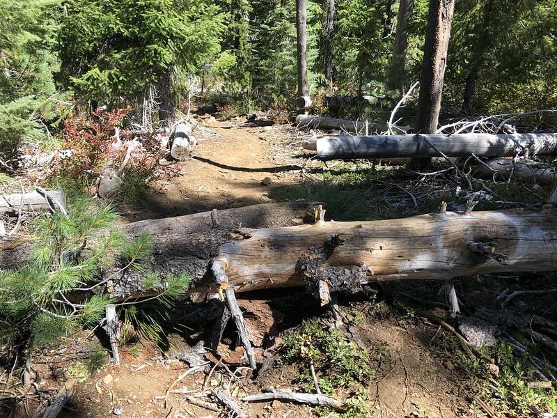 Temple Lake Trail