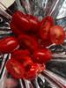 Salade en bocal (salad jar exotique) 3