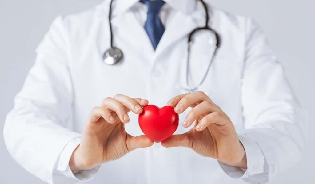 les-cœurs-endommagés-peuvent-ils-se-guérir-eux-mêmes-?
