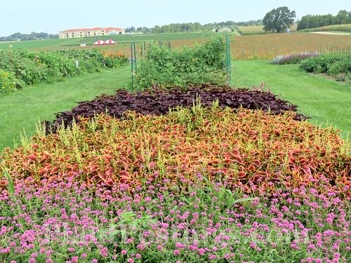 Display Gardens 2