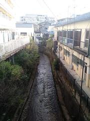 Kyoto, April 2016