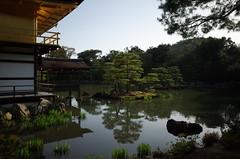 Kinkaku-ji, Kyoto, April 2016