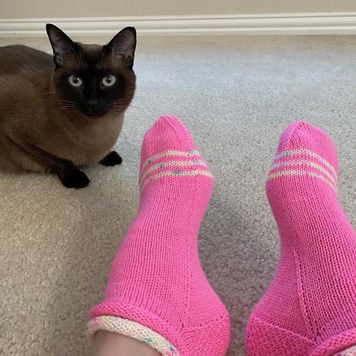 Jelly rolls socks