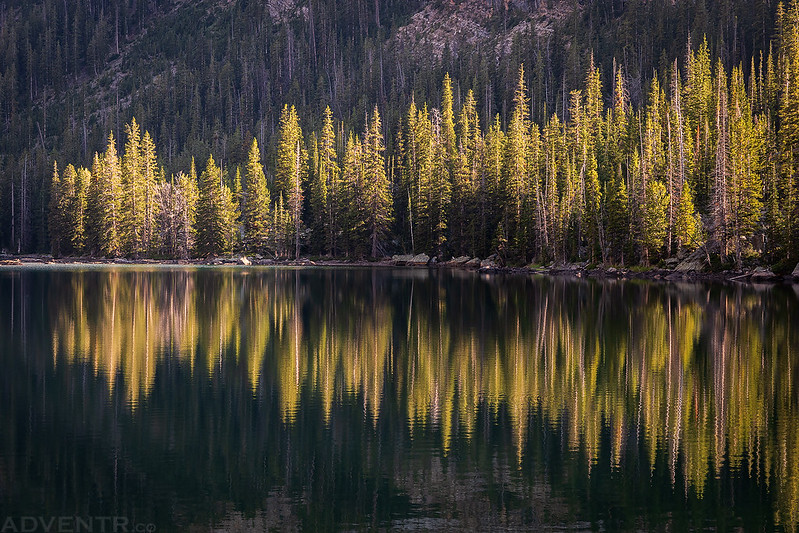 Light & Reflection