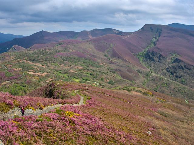 Colors hills