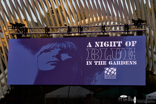 A Night of Blue in the Gardens