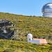 Telescopios del ORM del IAC