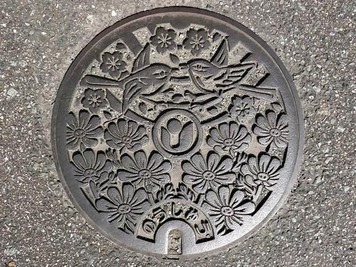 Uki Kumamoto, manhole cover (熊本県宇城市のマンホール)