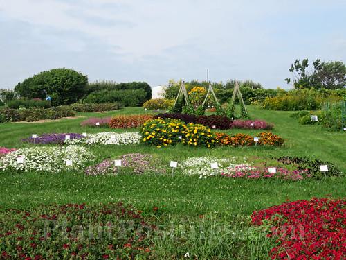 Display Gardens 4