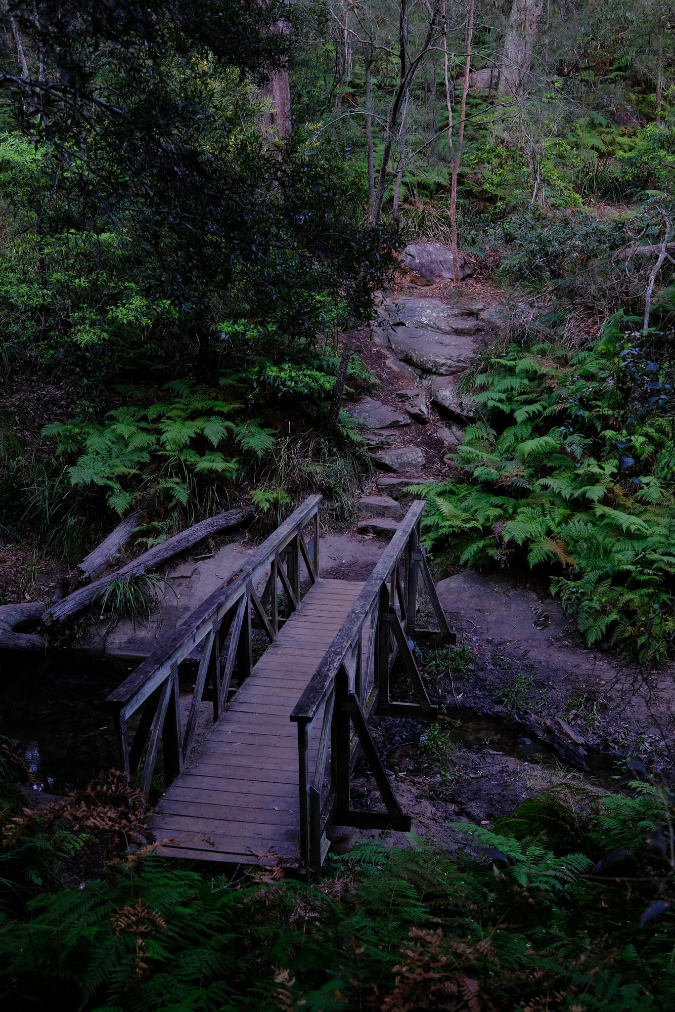 The Glen Reserve Bridge