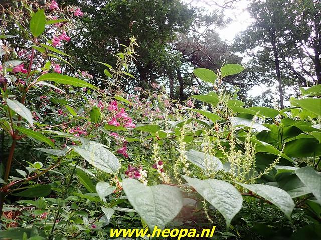2021-08-31    Hoogeveen -     Beilen 29 Km (23)