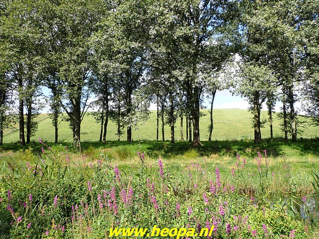 2021-08-31    Hoogeveen -     Beilen 29 Km (52)