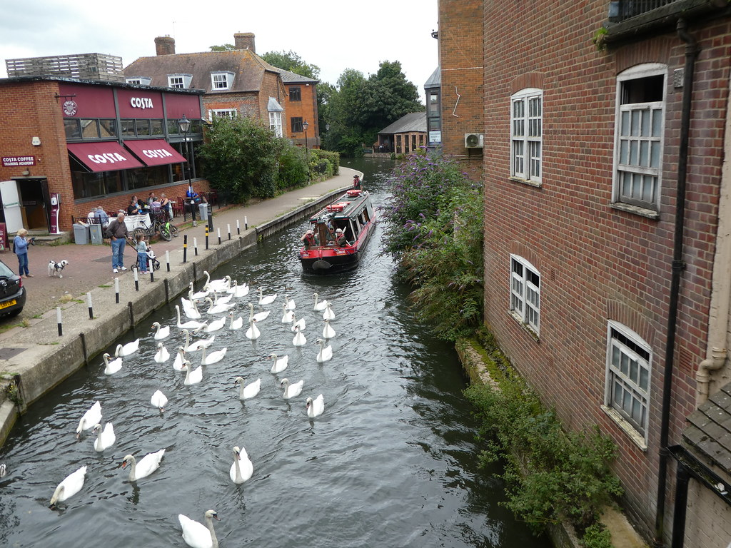 View of Kennet & Avon Canal from the bridge
