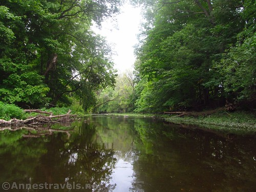 Quiet Black Creek below I-490 near Rochester, New York