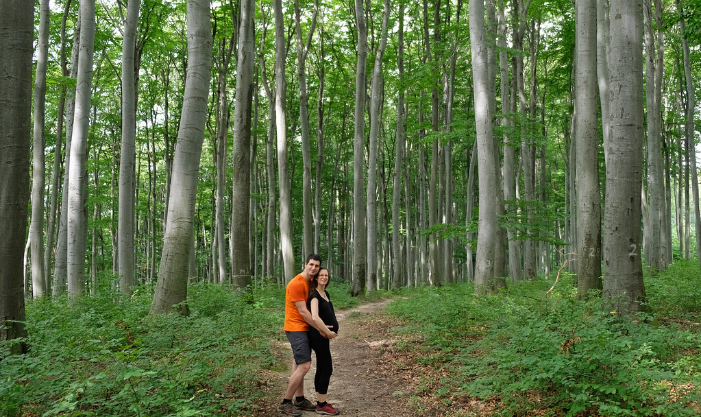 Hiking in leggings when pregnant - Bakony Mountains, Hungary