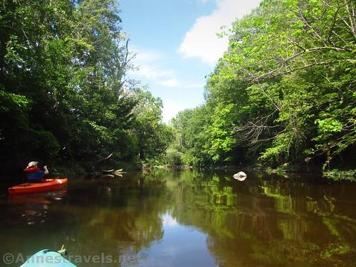Still water on Black Creek, Rochester, New York