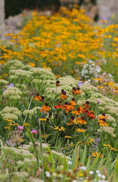 Flower Beds @ Ightham Mote NT..