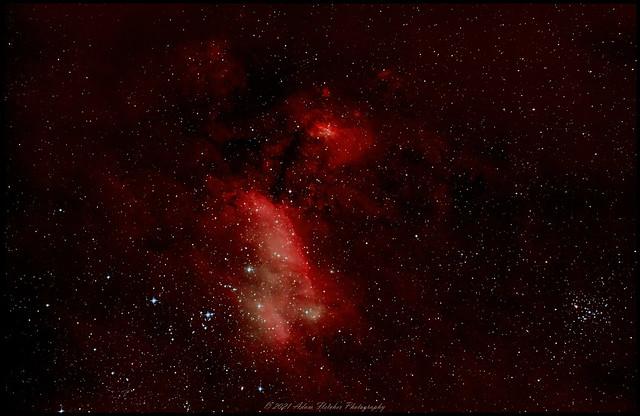 Prawn Nebula