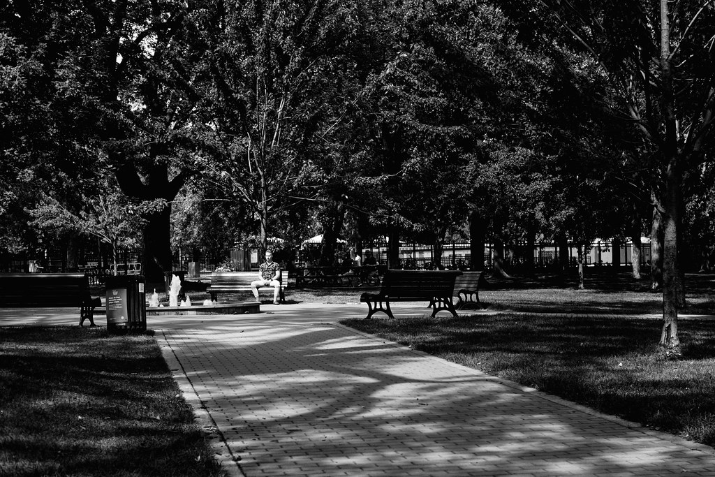 244/365 : Wednesday in the park