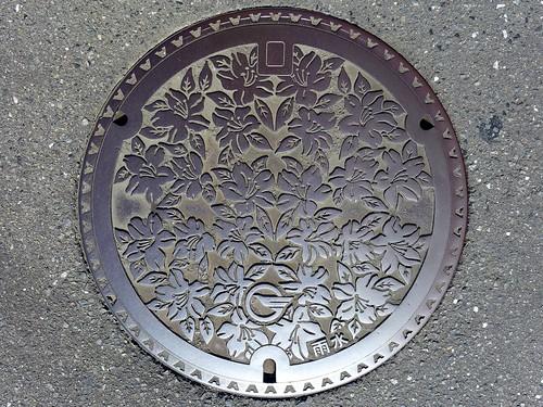 Higashimurayama Tokyo,  manhole cover 2 (東京都東村山市のマンホール2)