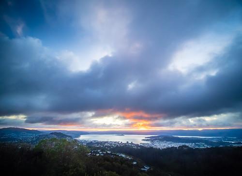 <p>Another pretty Wellington lockdown sunrise.</p>