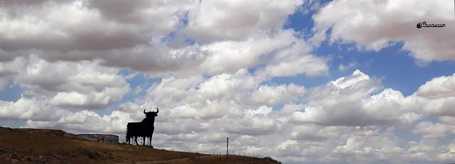 El Toro  ( Explore )