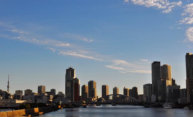 Tokyo harbour view