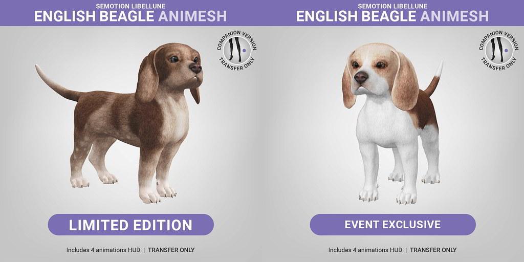 SEmotion Libellune English Beagle Animesh LIMITED