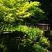 京都産業大学・P5100130