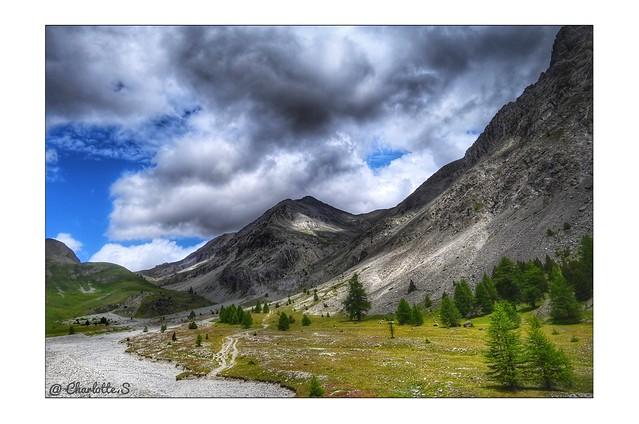 Rêver les Alpes