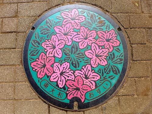 Higashiyamato Tokyo, manhole cover (東京都東大和市のマンホール)