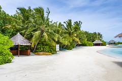 Proccess_Fotos_Maldivas_2021_0155-1