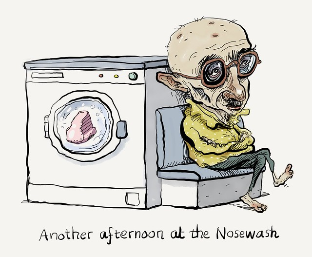 At the Nosewash