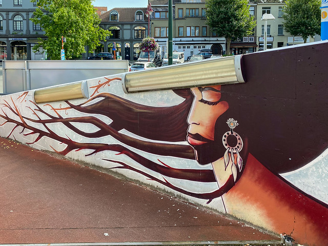 Vivier d'Oie Train Station street art