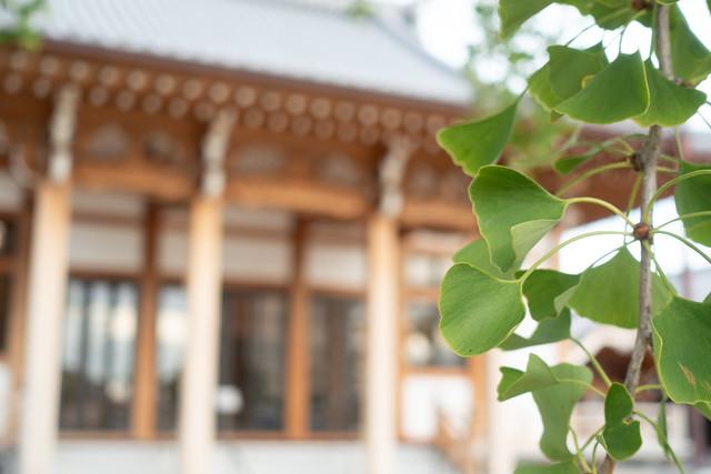 20210811 South-Anjo Shrines 3