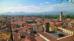 Vista da Torre Guinigi