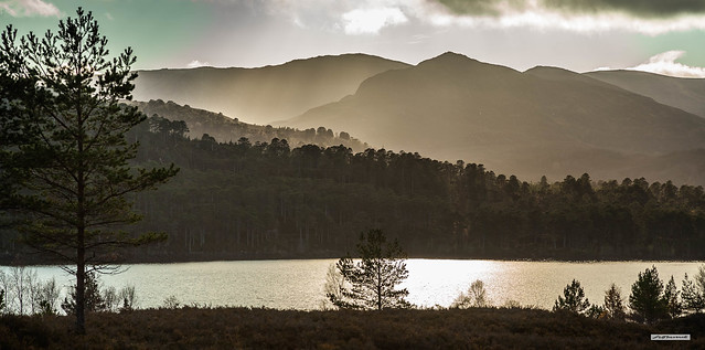 Almost a monochrome light-show in mercurial Glen Affric as the sun sets in late autumn, Inverness-shire, Scotland.