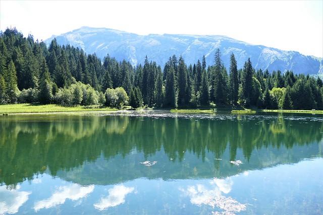 09.02.21.Lac des Mines d'Or (France)