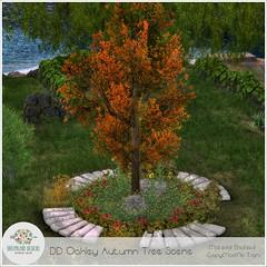 DD Oakley Autumn Tree Scene AD