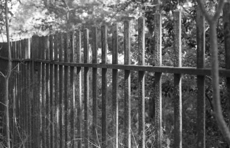 Olympus OM40 Fence B&W