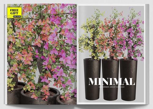 MINIMAL - September Group Gift 2021