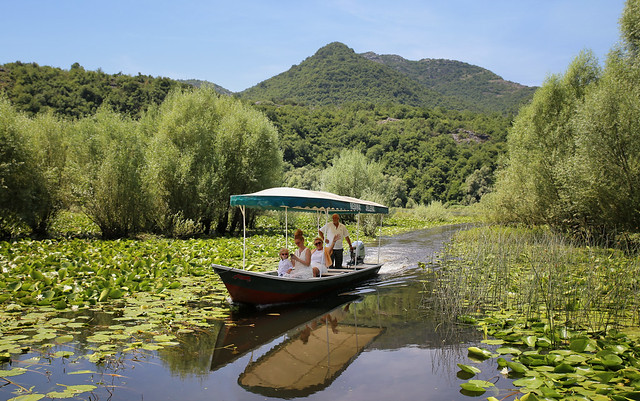 Exploring Lake Skadar National Park by boat