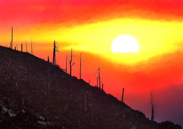 Fire Scar - Dawn