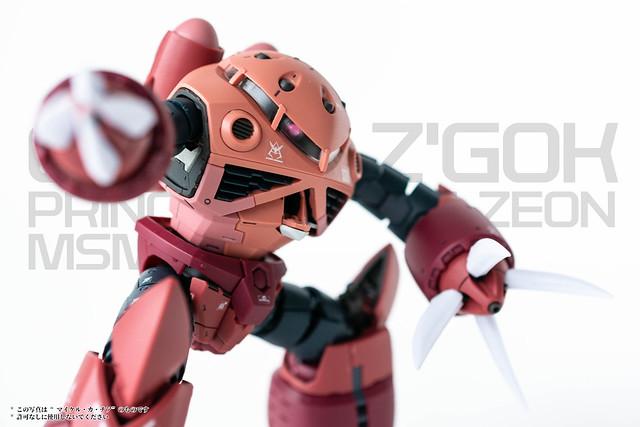 Gunpla - RG - Char's Zgok-8