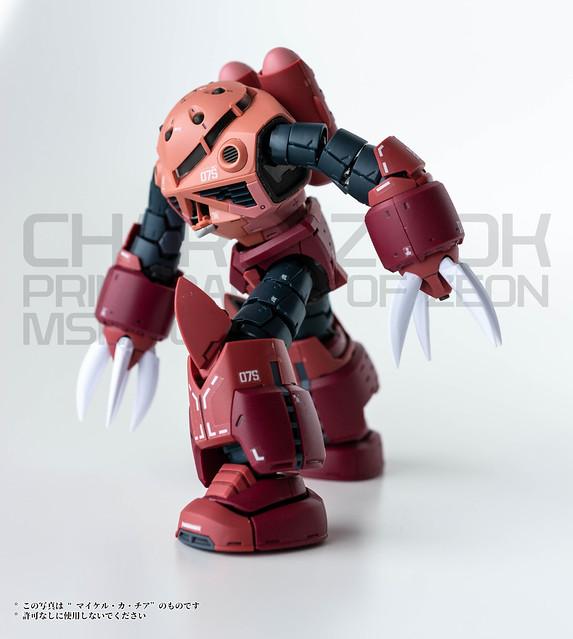 Gunpla - RG - Char's Zgok-4