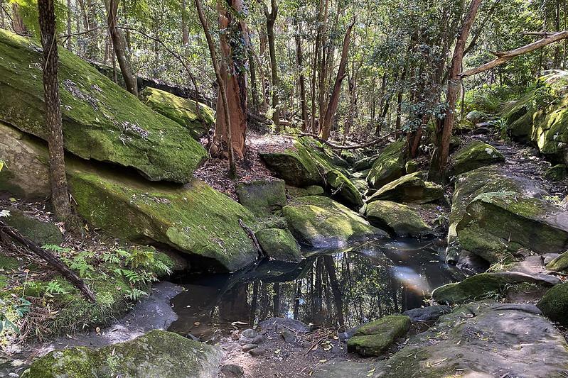 Tambourine Creek