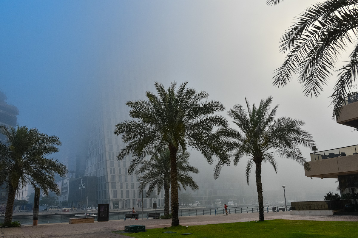 Dubai-Marina-(40)