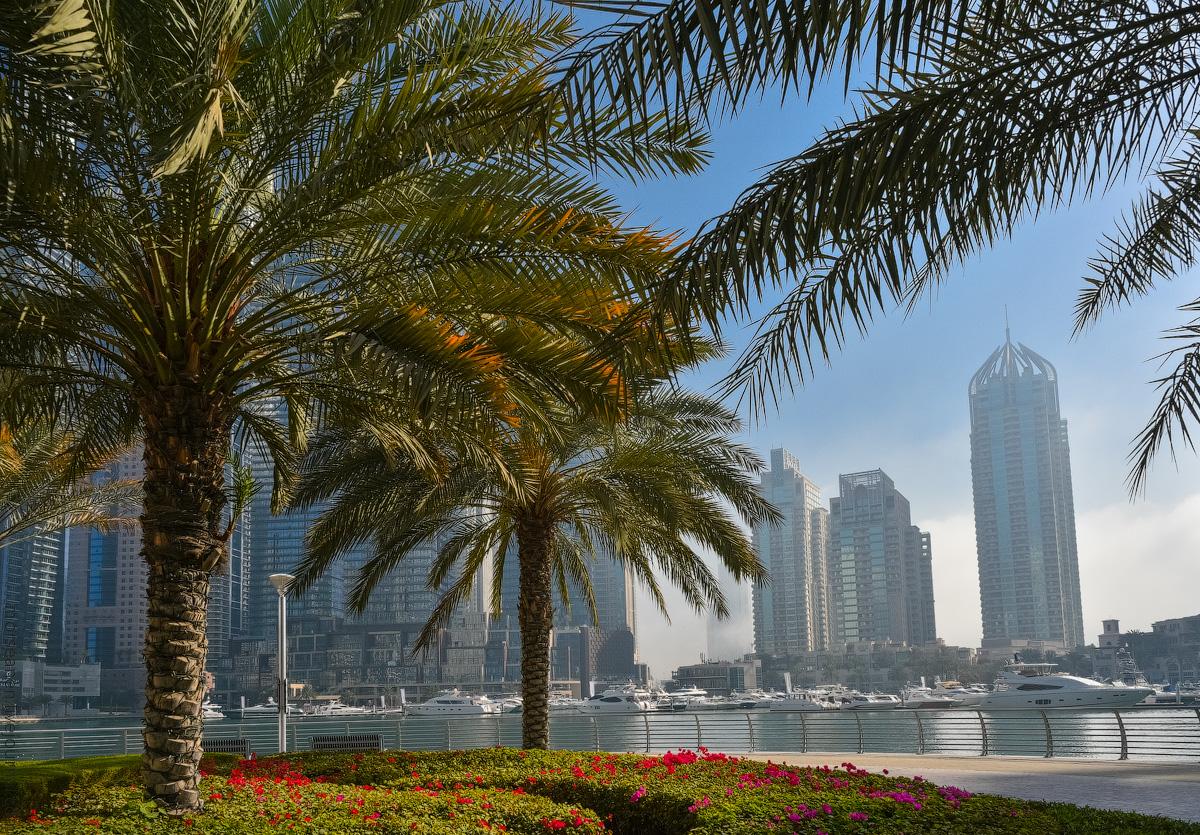 Dubai-Marina-(39)