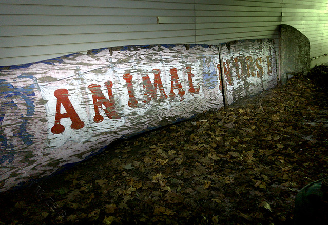 Animal Nursery IMG_5048